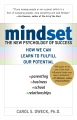 Musings on Mindsets