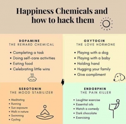 happinesshormones