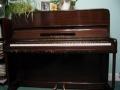 Piano Revelation